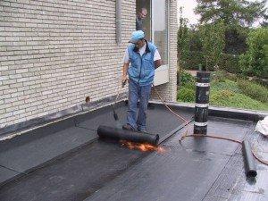 Mos op daken bestrijden